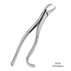 16 Cowhorn Forceps 1st & 2nd Lower Molars